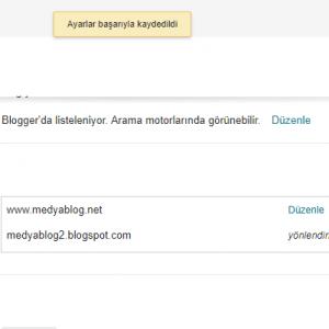 Blogger alan adı kaydetmek